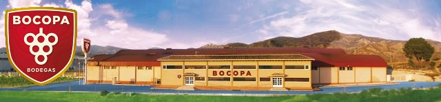 ボデガス・ボコパ