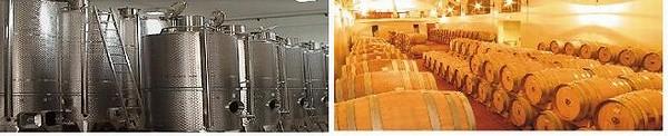 マラミエーロのステンレスタンクと貯蔵樽