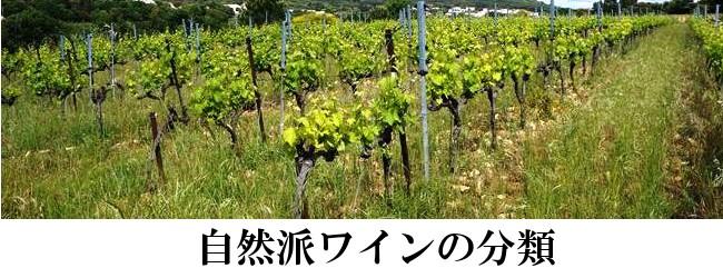 オーガニック、自然派ワイン
