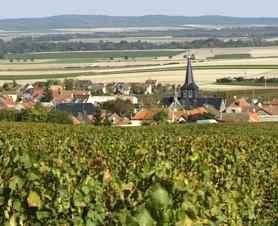 Villers-Marmeryの畑